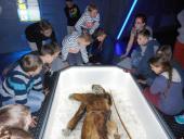 Galeria Fascynujący Świat Nauki  rozpoczynamy nowe działanie  w projekcie poprzez wyjazdy edukacyjne do Jura Parku oraz Parku Nauki i Ewolucji Człowieka w Krasiejowie!