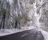 zimowe utrz.drog.jpeg