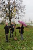 """Galeria """"Drzewa XX-lecia Odnowy Wsi"""" posadzone!!!"""